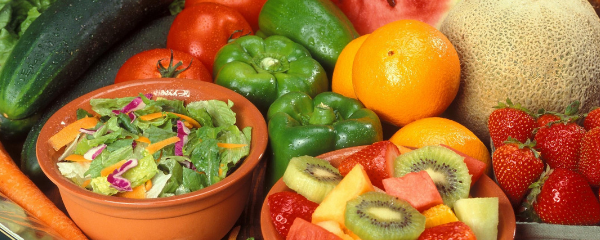 What are the Benefits of a Plant Based Diet?